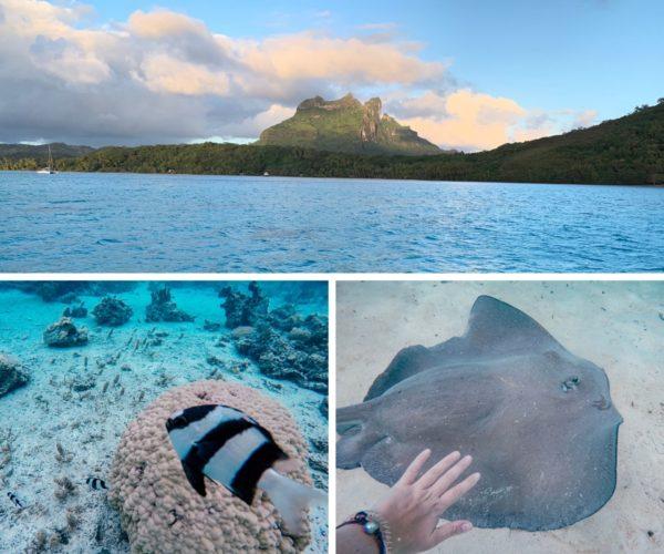 Segeln in Polynesien